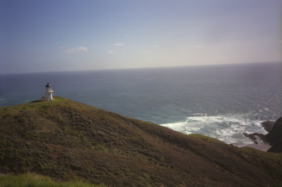 All, New Zealand,Light House
