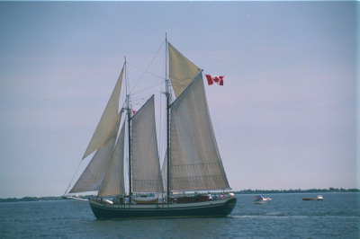All, Kingston,Canada,Ontario,Tall Ships, Flags