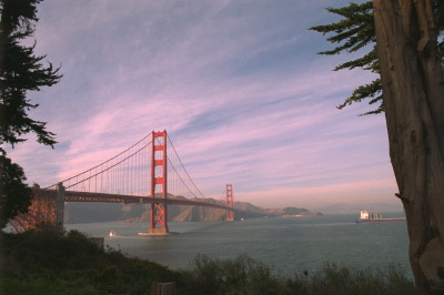 All, San Fransico,USA,California,Bridge